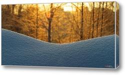 Зимний, солнечный день в лесу