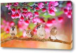 птенцы на яблоне