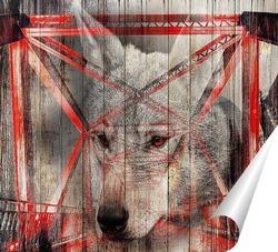 Постер Портрет волка