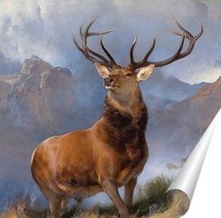 Постер Монарх Глен