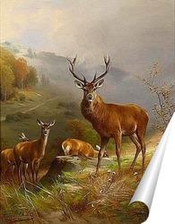 Постер Олень 1888