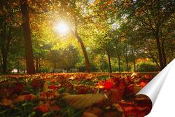 Постер Пылающая осень