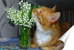 Постер рыжий кот и ландыши