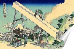 Постер В горах Тотоми