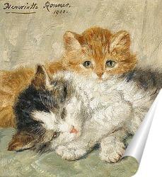 Постер Сонные котята