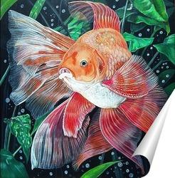 Постер Золотая рыбка.