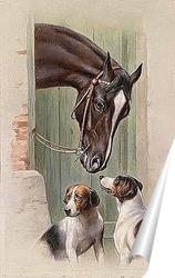 Постер Посещение конюшни