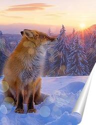 Постер Лиса на закате