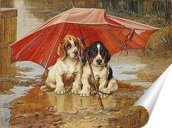 Постер Под зонтом