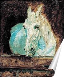 Постер Белая лошадь
