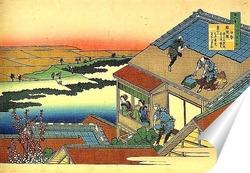 Постер Крыша дома