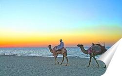 Постер Прогулка на верблюдах