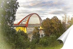 Постер Бугринский мост в городе Новосибирске