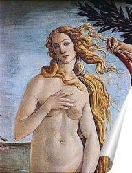 Постер Botticelli-2