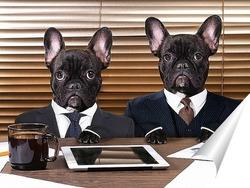 Постер Собаки в черном