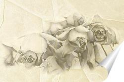 Постер Монохромные розы