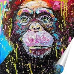 Постер Шимпанзе