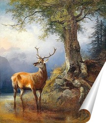 Постер Олень у озера Гозау