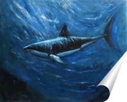 Постер Акула. Подводный мир