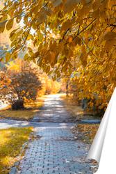 Постер Осенняя аллея в парке