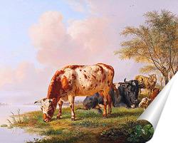 Постер Коровы и овцы на берегу реки