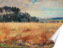 Постер Холмистое поле с маками
