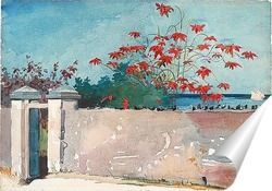 Ки-Уэст, 1903