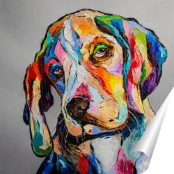 Постер Собака-философ