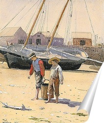 Постер Корзина моллюсков