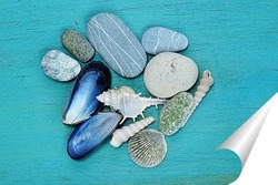 Постер ракушки и камни на голубой деревянной поверхности