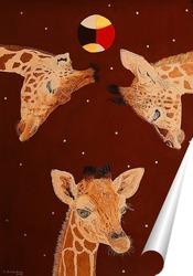 Постер Африка. Жирафы