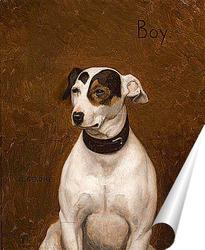 Постер Портрет собаки