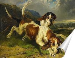 Постер Собаки и пейзаж