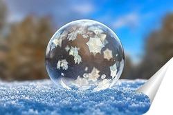 Постер Замёрзший мыльный пузырь в зимнем лесу
