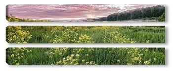 Модульная картина Полевые цветы России