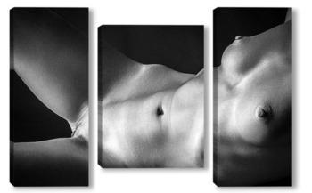 Модульная картина эротический портрет