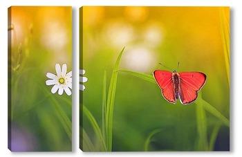 Модульная картина яркая оранжевая бабочка сидит на летнем лугу
