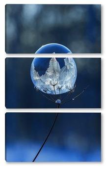 Модульная картина Замёрзший мыльный пузырь на высохшем цветке