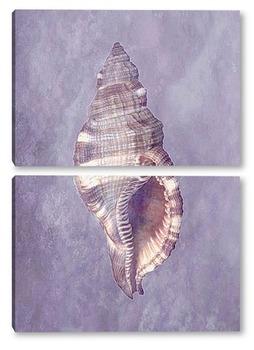 Модульная картина Shell030