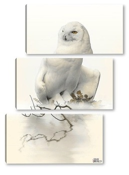 Модульная картина Полярная сова
