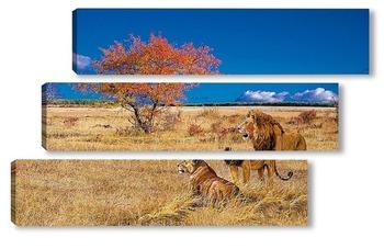 Модульная картина Лев и львица