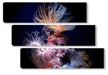 Модульная картина Medusa016