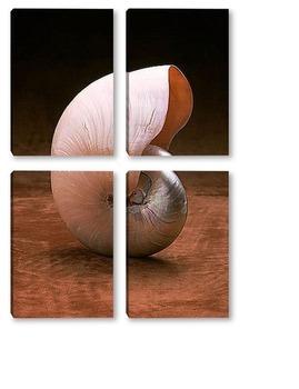 Модульная картина Shell010