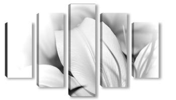 Модульная картина Белая лилия.