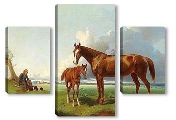 Модульная картина Лошадь с жеребенком