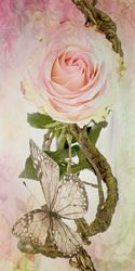 Наклейки Бабочка с розой