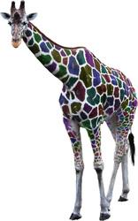 Наклейки Разноцветный жираф