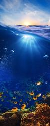 Наклейки Подводный мир