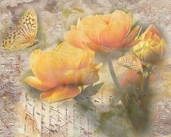 Наклейки Бабочки на цветах