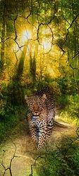 Наклейки Леопард в лесу